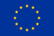 190203 EU FLAG